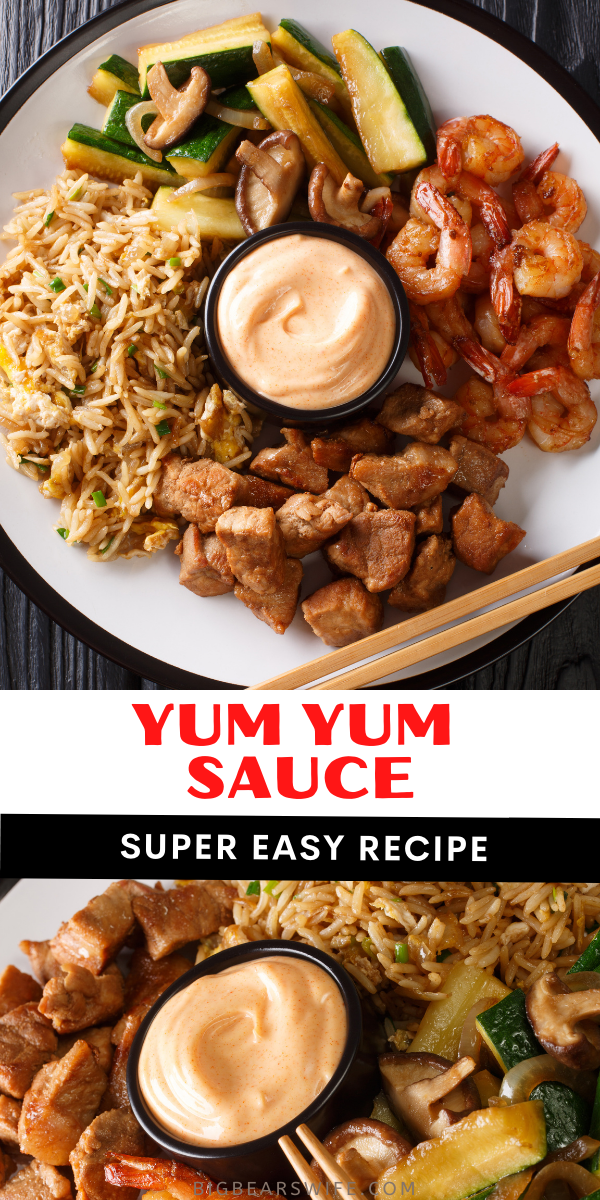 This Japanese White Sauce, also known as YUM YUM SAUCE, is just like the white sauce that you get at Japanese Hibachi Steakhouses and Sushi Restaurants! It's so easy to make and perfect for Hibachi Chicken, Hibachi Steak, Hibachi Shrimp and Rice!