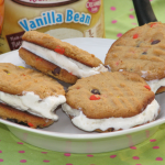 Ice Cream Peanut Butter Cookie Sandwich