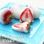 FrozenStrawberryVanillaYogurtBites1