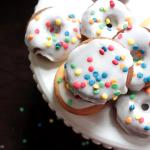Mini Donuts and The Circus – Greensboro, NC