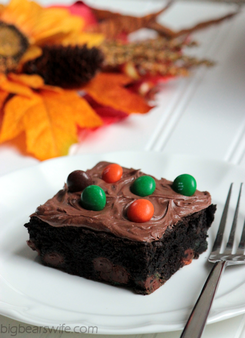 Dark Chocolate Pumpkin Spice Brownies | BigBearsWife.com