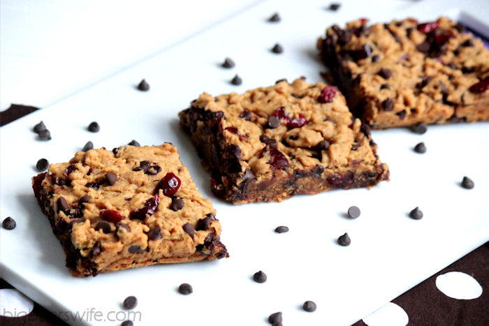 {Gluten Free} Butterscotch Blondies with Chocolate Chips and Cranberries