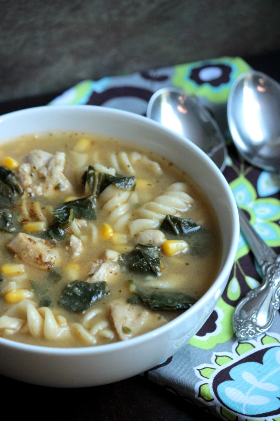 Chicken and Vegetable Noodle Soup from Big Bear's Wife
