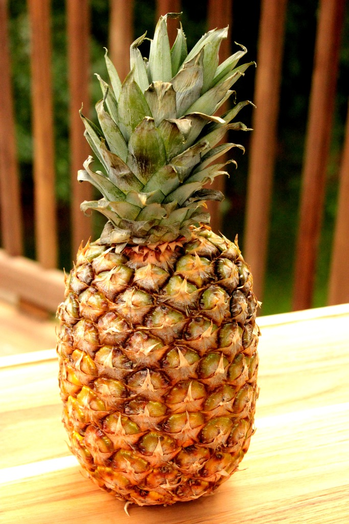 Pineapple for Grilled Fruit Kabobs