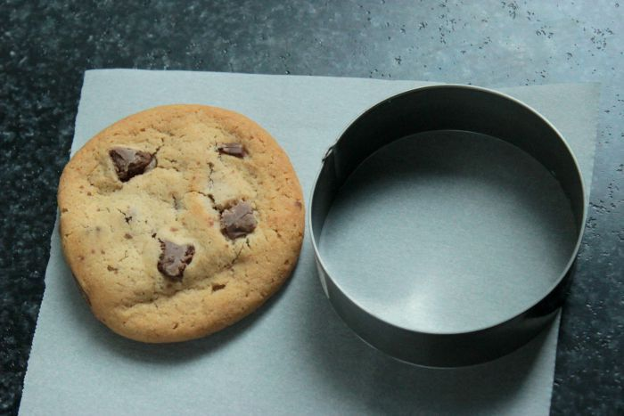 Monster Cookie Ice Cream Sandwich with an Oreo Surprise inside!