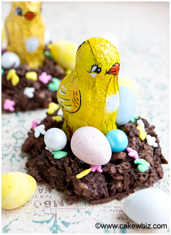 Chocolate coconut Easter Bird Nests from Cake Whiz
