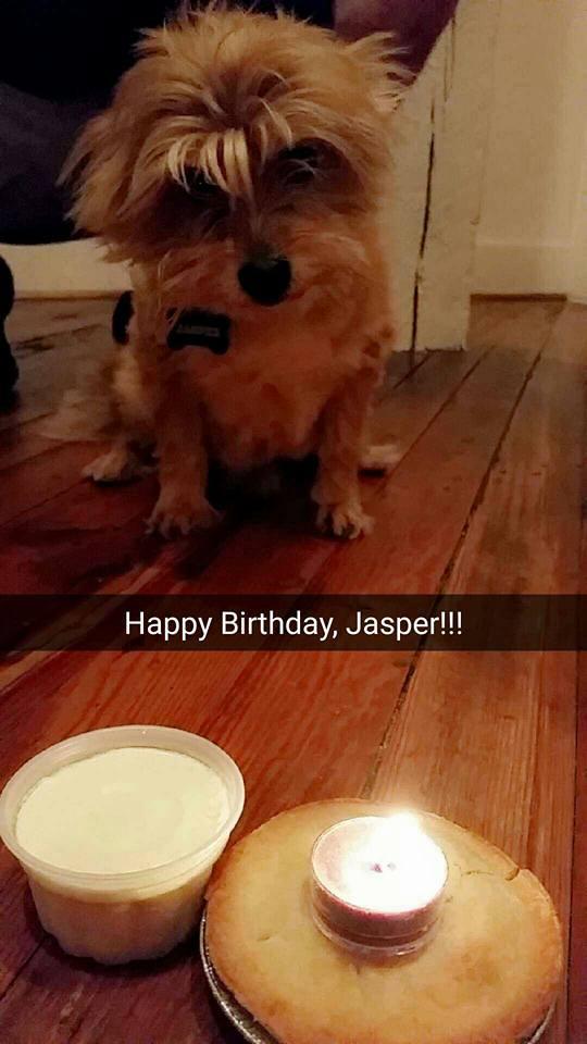 Happy Birthday, Jasper!!
