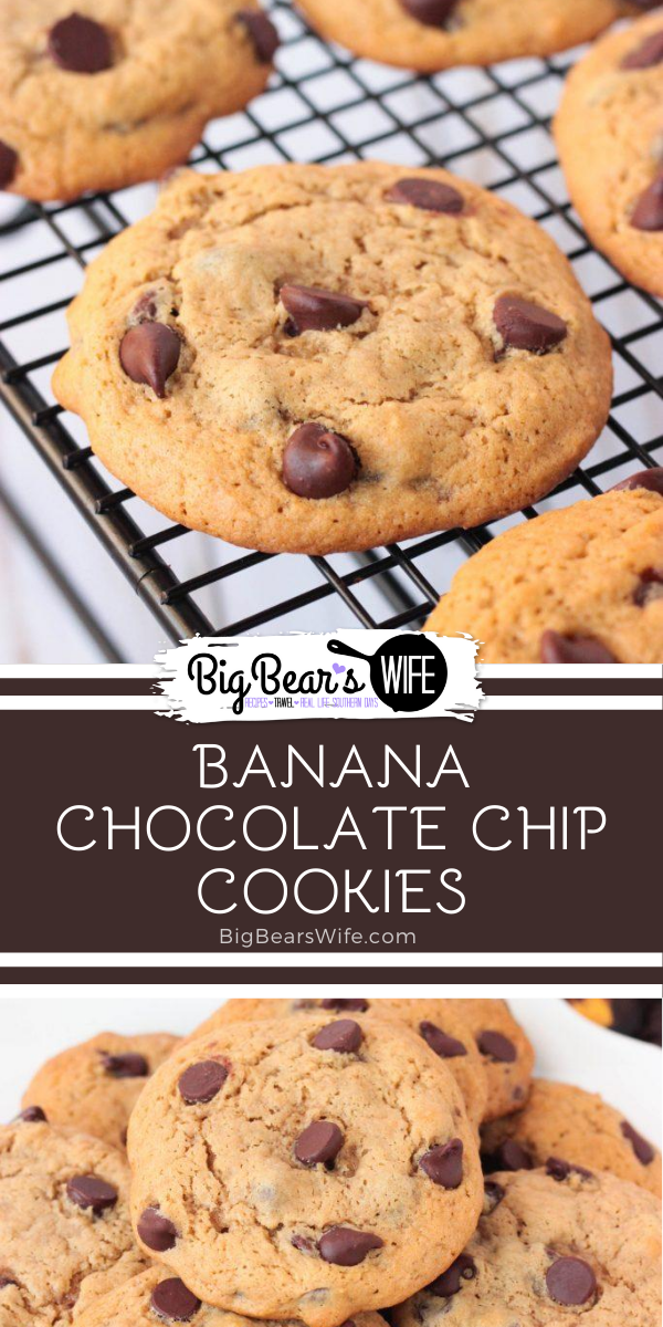 Banana Chocolate Chip Cookies - Banana and Chocolate go hand in hand in desserts like these Banana Chocolate Chip Cookies! These cookies are doubled up on the banana flavor with mashed banana and banana extract added into the batter. They're also super soft and packed with chocolate chips. via @bigbearswife