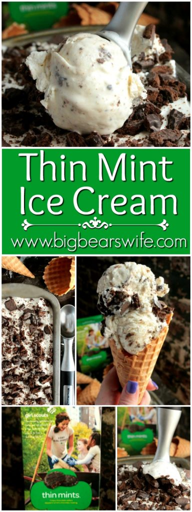 Thin Mint Ice Cream Collage