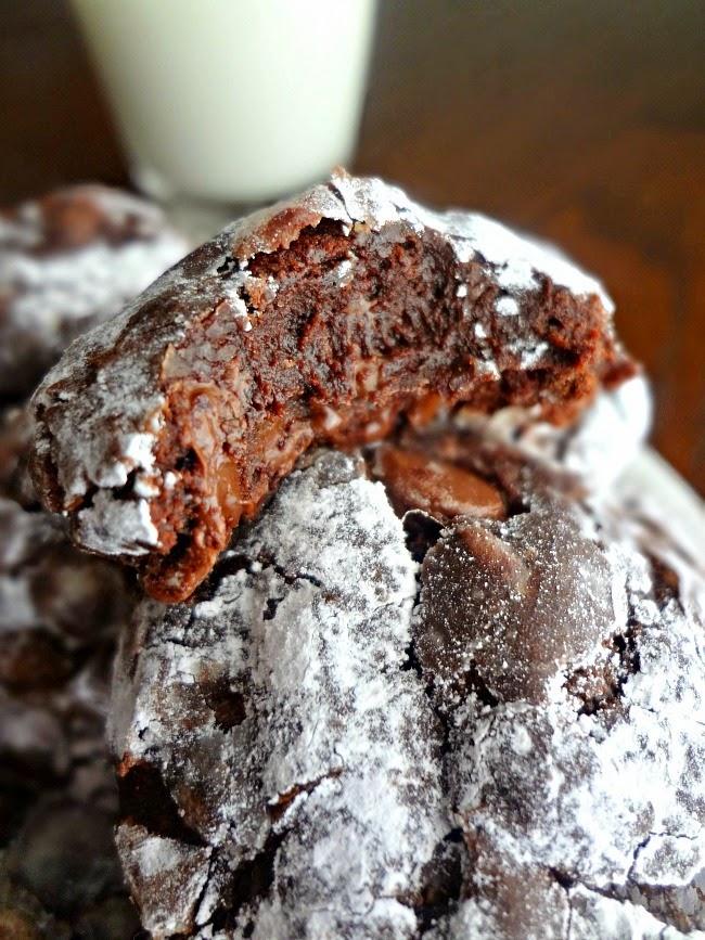 flourlesschocolatecookies5