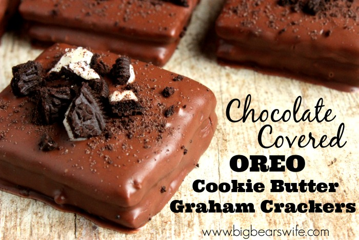 Chocolate Covered Cookie Butter Stuffed Graham Crackers