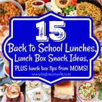 15 Back to School Lunches, Lunch Box Snack Ideas PLUS lunch box tips from MOMS!