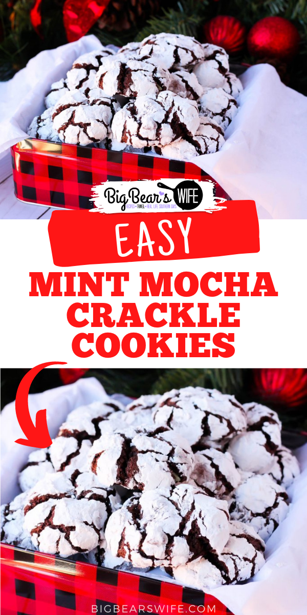 Chocolate Crackle cookies with a minty twist for the holidays! TheseMint Mocha Crackle Cookies would be perfect for Santa! via @bigbearswife