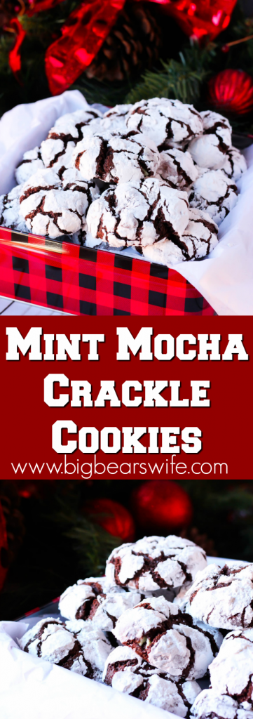 Mint Mocha Crackle Cookies - Chocolate Crackle cookies with a minty twist for the holidays! These Mint Mocha Crackle Cookies would be perfect for Santa!