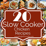20 Slow Cooker Chicken Recipes