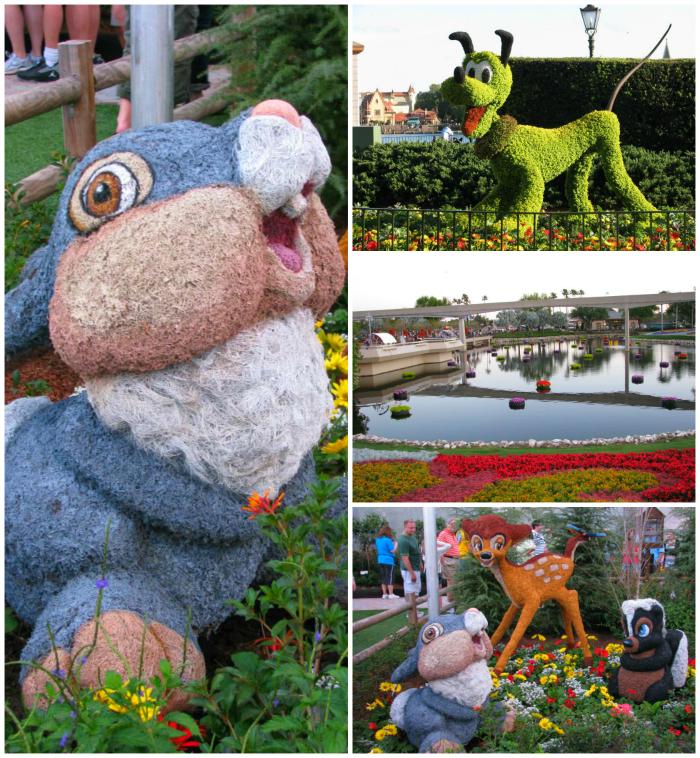International Flower & Garden Festival
