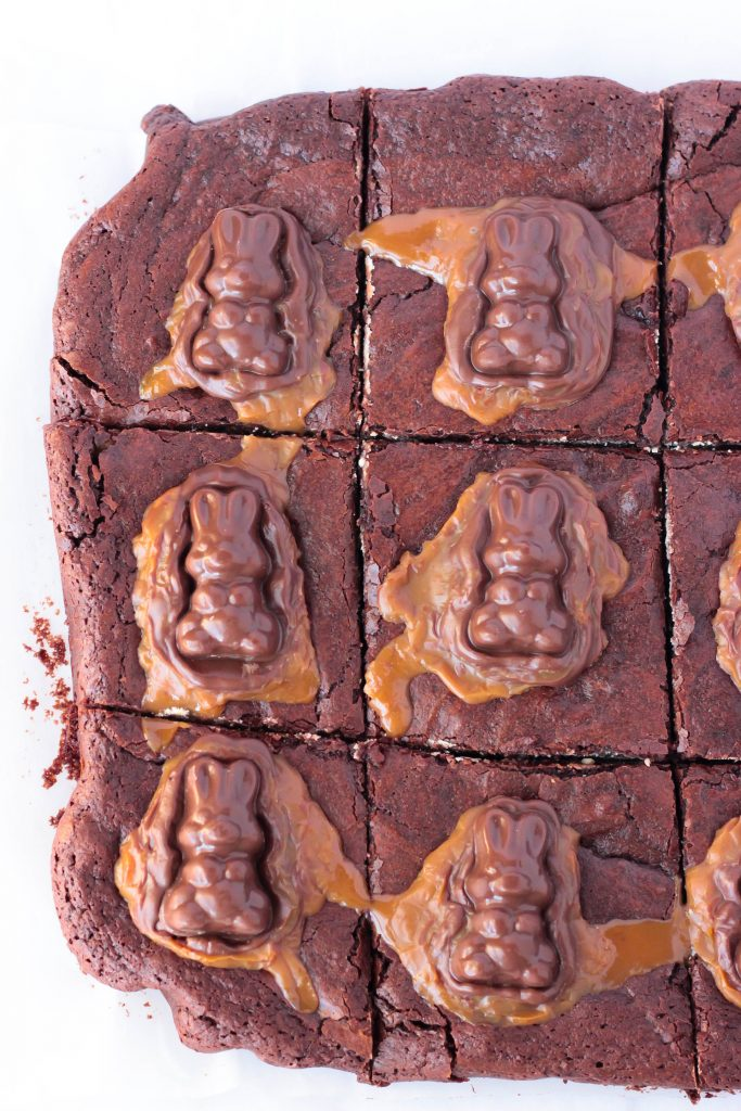 Overhead shot of Caramel Bunny Peanut Butter Brownies cut into squares