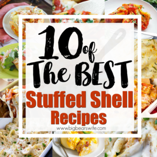 Stuffed Shells always end up making it onto our menu plan at least once a month! I love traditional stuffed shells but I'm also crazy about new ideas and here you'll find10 of the BEST Stuffed Shell Recipes out there! Give one of them a try this week! Let me know which one you love the most!
