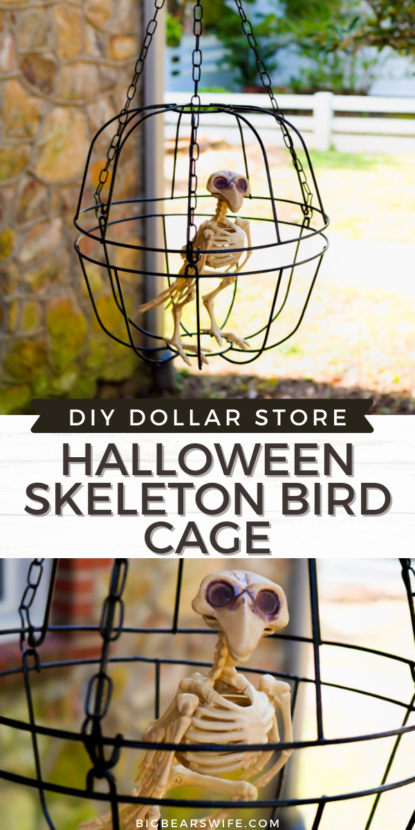 Decorate on a budget with this easy dollar store DIY Halloween Skeleton Bird cage. This fun DIY Halloween craft cost $3 to make and your DIY Dollar Store Halloween Skeleton Bird cage will look perfectly creepy outside or inside this Halloween!