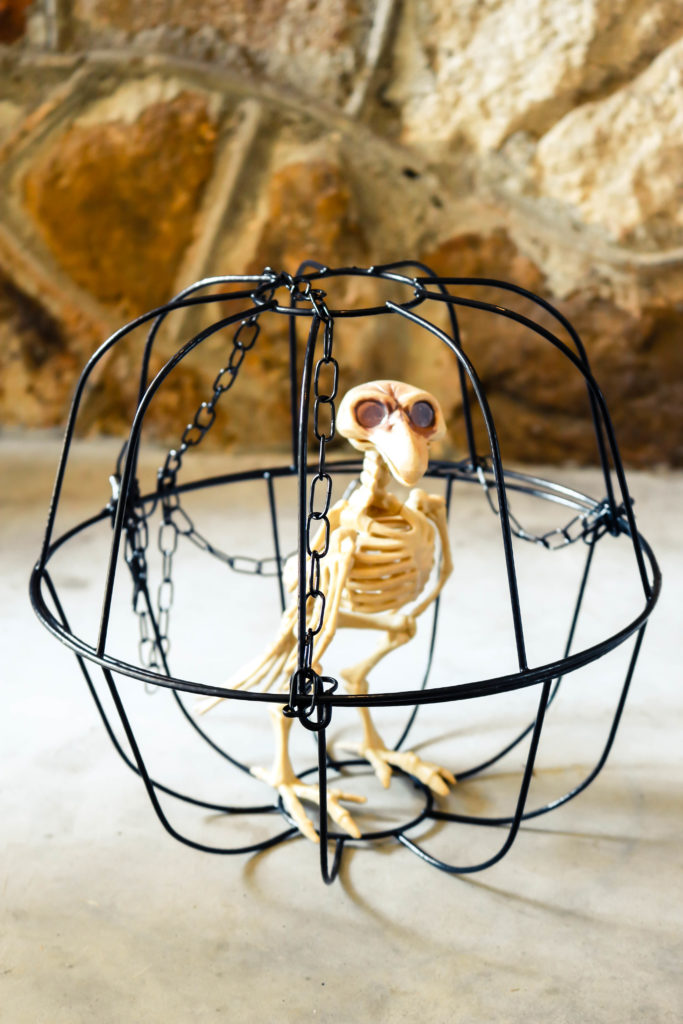 DIY Dollar Store Halloween Skeleton Birdcage