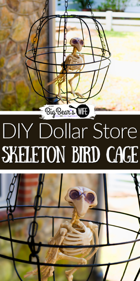 DIY Dollar Store Halloween Skeleton Bird Cage - Decorate on a budget with this easy dollar store DIY Halloween Skeleton Bird cage. This fun DIY Halloween craft cost $3 to make and your DIY Dollar Store Halloween Skeleton Bird cage will look perfectly creepy outside or inside this Halloween! #DollarStoreDIY #DollarStoreHalloweenCraft #HalloweenCraft