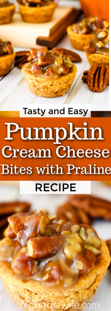 Pumpkin Cream Cheese Bites with Praline Topping are the perfect bite-size dessert to satisfy any sweet tooth. Made with a graham cracker crust, a simple and tasty pumpkin cheesecake filling and topped with a homemade praline sauce, these tasty little bites are perfect for any holiday.