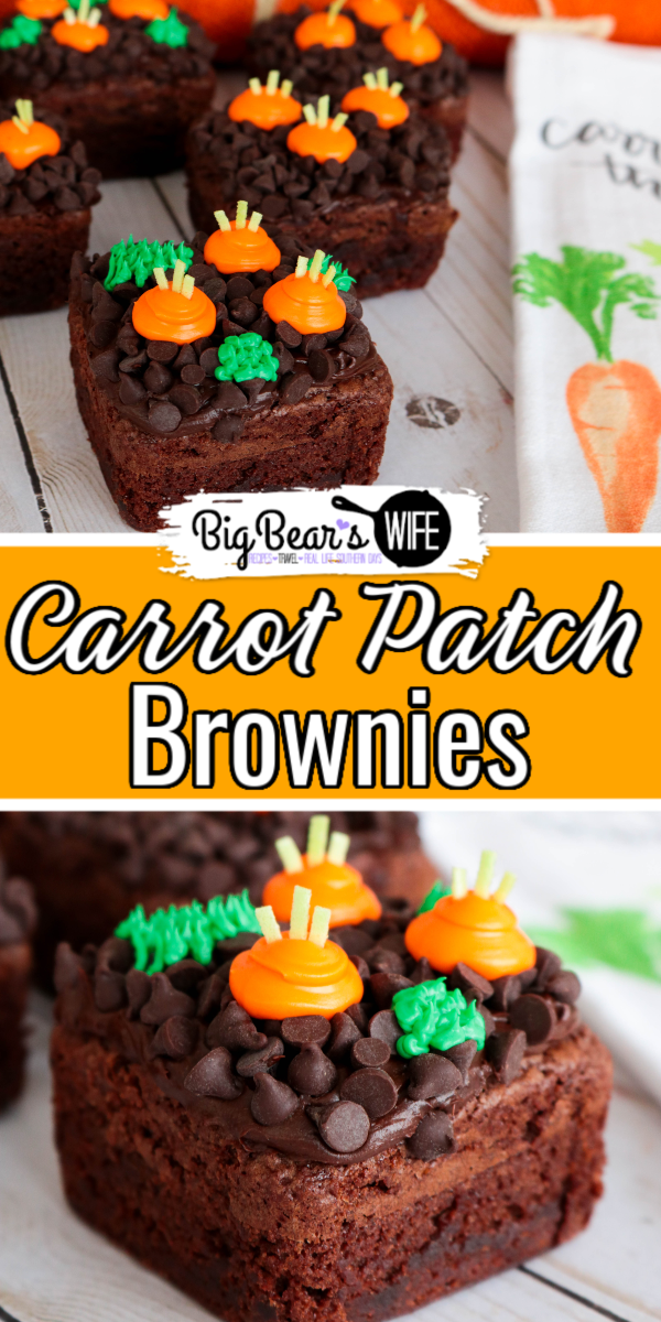 The Easter Bunny will be hopping around the corner any day now and he will love getting to snack on a few carrots from these Carrot Patch Brownies! They're easy to decorate and would look super cute as the sweet treat for any Easter or Spring time meal!