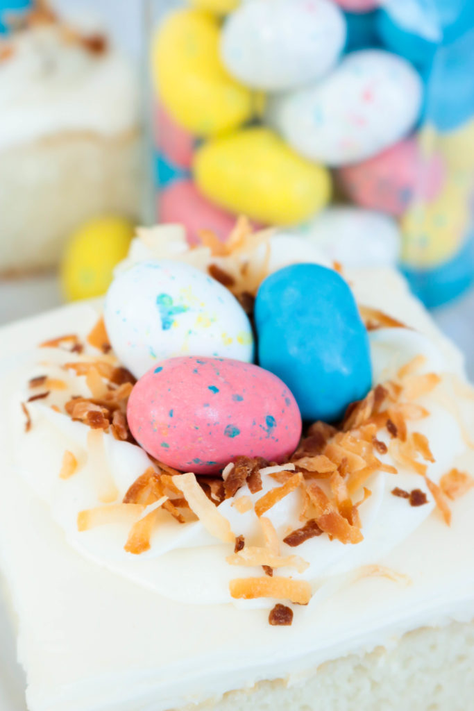 Robin Egg candy on Bird's Nest White Sheet Cake