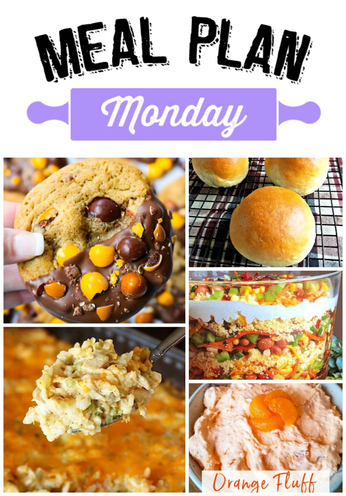 Meal Plan Monday is packed with tons of free recipes for breakfast, lunch, dinner and dessert! You'll find all kinds of new recipes to add to your favorites!