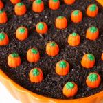 Pumpkin Patch Eclair Dessert