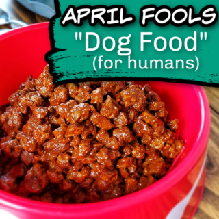 Dog Food for Humans - APRIL FOOLS Recipe - Freak out your friends, family and kids this April Fools day with this tasty and edible Dog Food for Humans! Don't worry, it's just beef and but served up in a clean dog bowl it looks just like Rover's food!