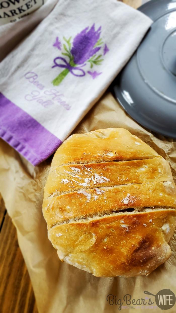 No Knead Crusty Bread (1)