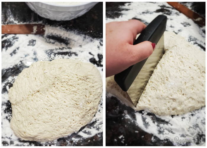 Bread dough being cut in half to rise a second time