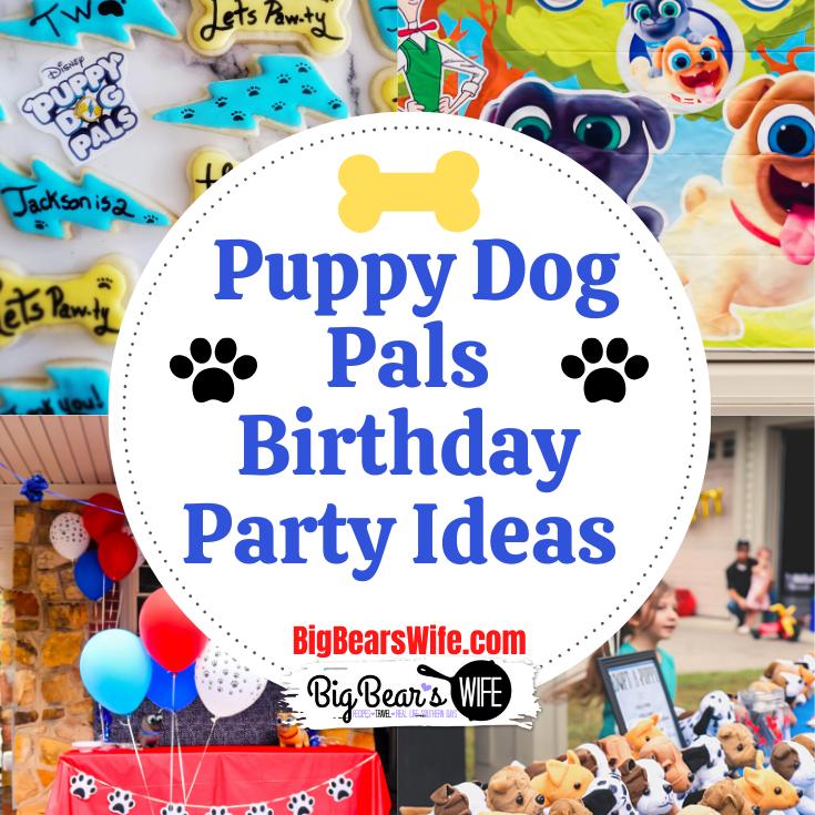 Puppy Dog Pals Birthday Ideas