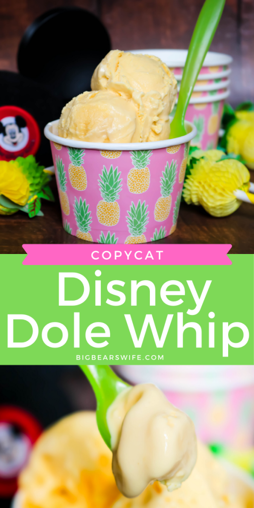 CopyCat Disney Dole Whip