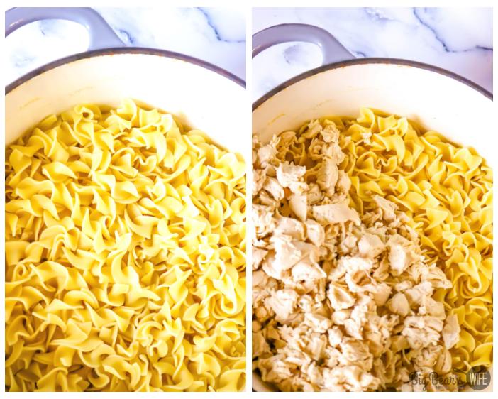 Egg Noodles in a pot * Egg Noodles in a Pot with Chicken