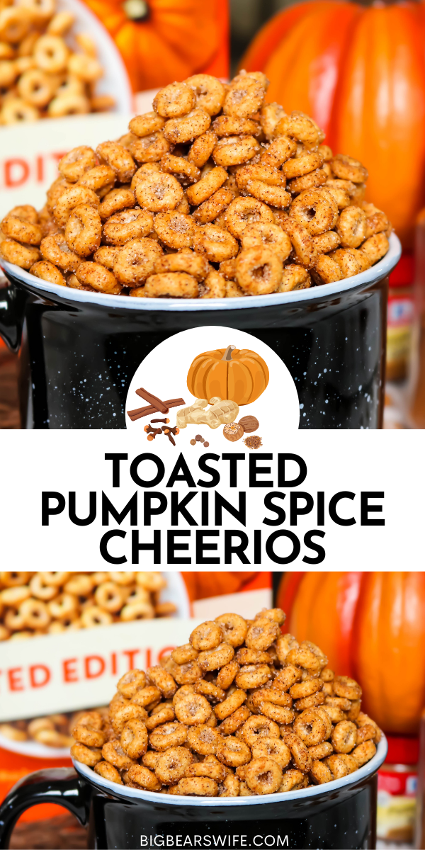 Love Pumpkin Spice? These Toasted Pumpkin Spice Cheerios are perfect for snacking and so quick to make! A toasted Cheerios vintage treat with a pumpkin spice twist!