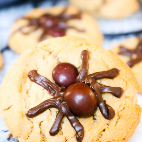 This Peanut Butter Spider Cookies recipe is an easy Halloween cookie recipe! These easy spider cookies are based on my favorite Peanut Butter Blossoms and the spiders are made with brown M&Ms and melted chocolate chips!