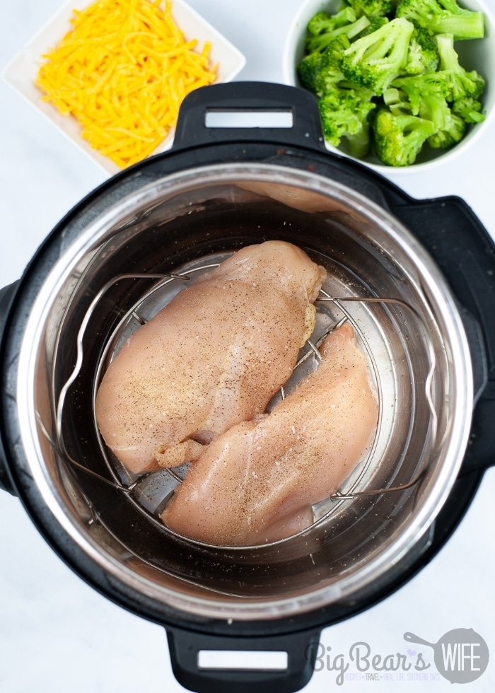cooking chicken in the instant pot