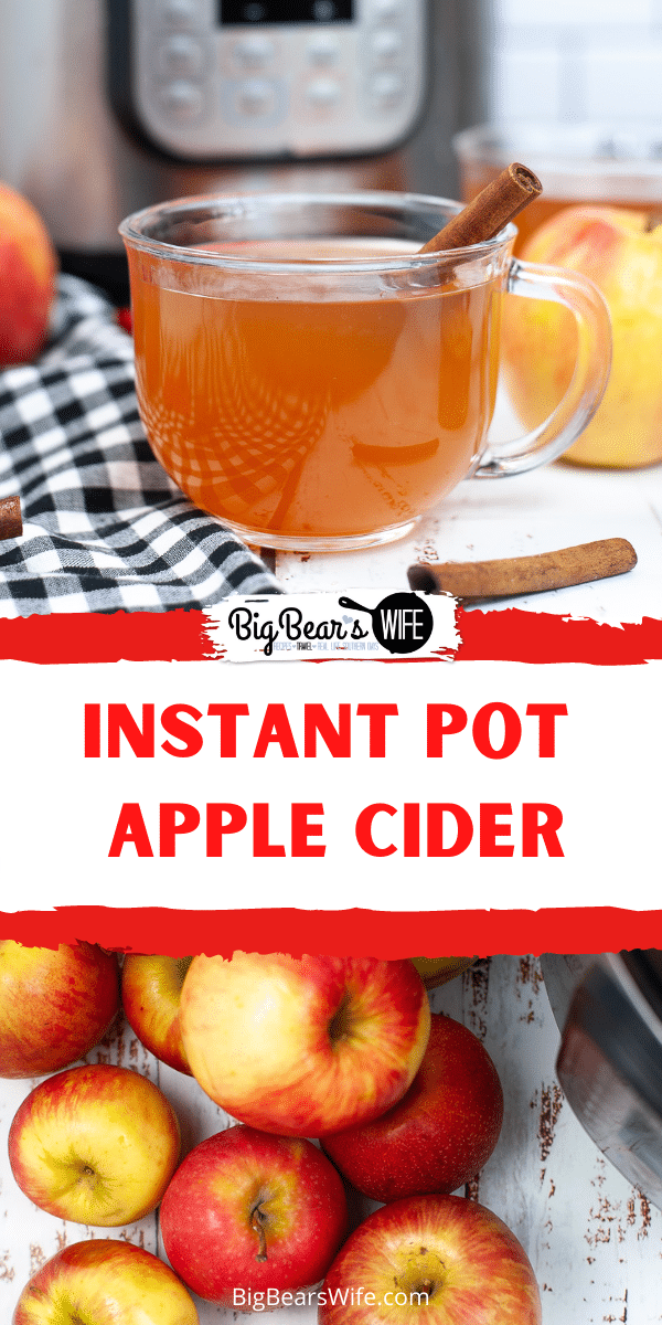 Warm up this fall and winter with a warm mug of homemade Instant Pot Apple Cider! A perfect mug of apple and cinnamon is waiting for you! via @bigbearswife