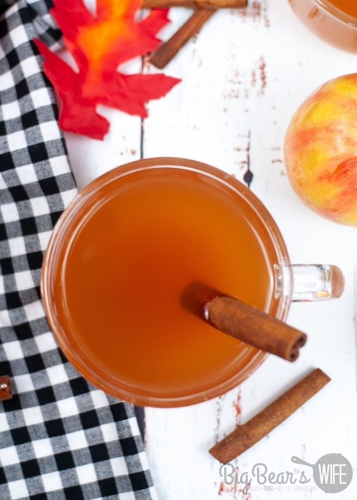 Instant Pot Apple Cider over head shot with cinnamon stick