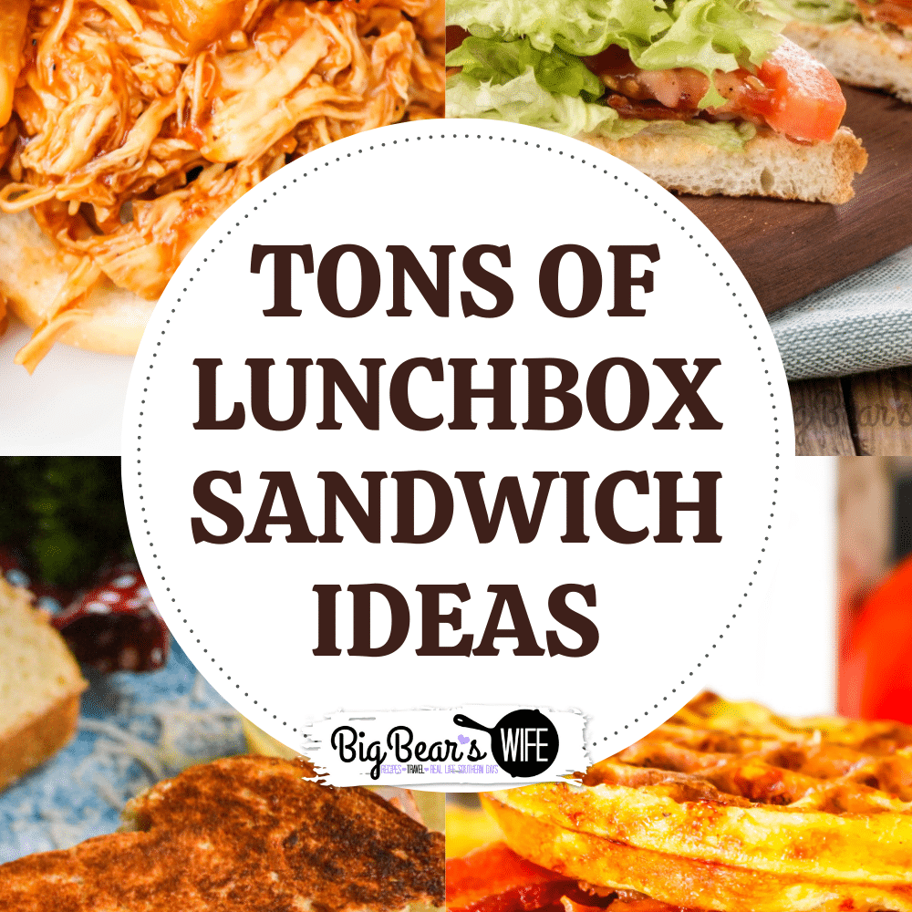 LUNCHBOX SANDWICH IDEAS